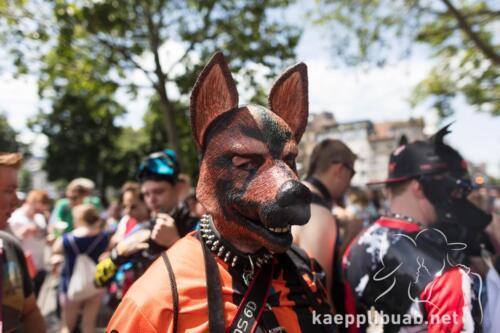 0022-20190615-zuerich zurich pride festival